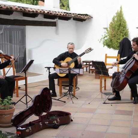 EPIPHONUS Camerata Trio (2)