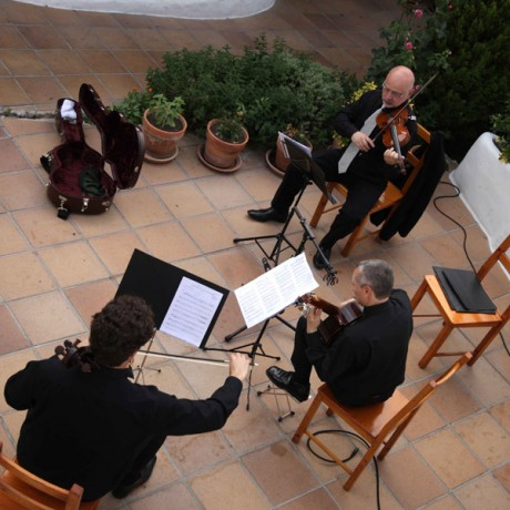 EPIPHONUS Camerata Trio (3)